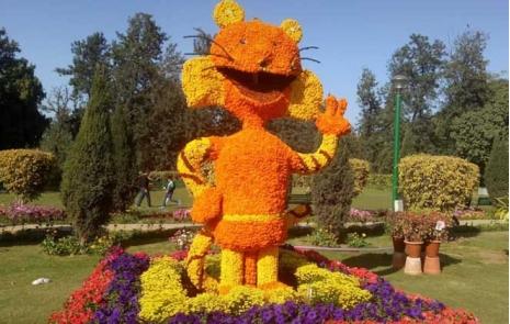 Nehru Park Flowers