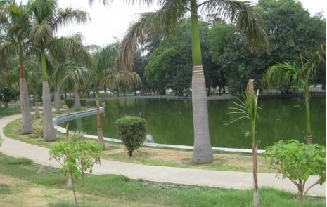 Nehru Park Swimming Pool